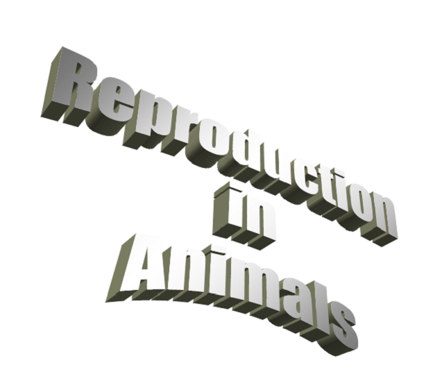 reproduction-in-animals-for-class-5th